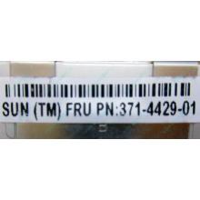 Серверная память SUN (FRU PN 371-4429-01) 4096Mb (4Gb) DDR3 ECC в Крыму, память для сервера SUN FRU P/N 371-4429-01 (Крым)