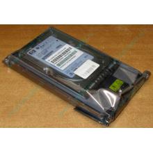 Жёсткий диск 146.8Gb HP 365695-008 404708-001 BD14689BB9 256716-B22 MAW3147NC 10000 rpm Ultra320 Wide SCSI купить в Крыму, цена (Крым).
